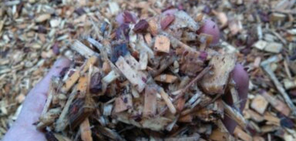 Hackschnitzel, Holzschnitzel der natürliche Brennstoff